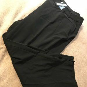 Dress slacks from lane Bryant